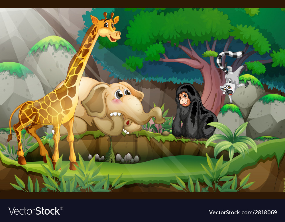 Animals in jungle vector | Price: 3 Credit (USD $3)