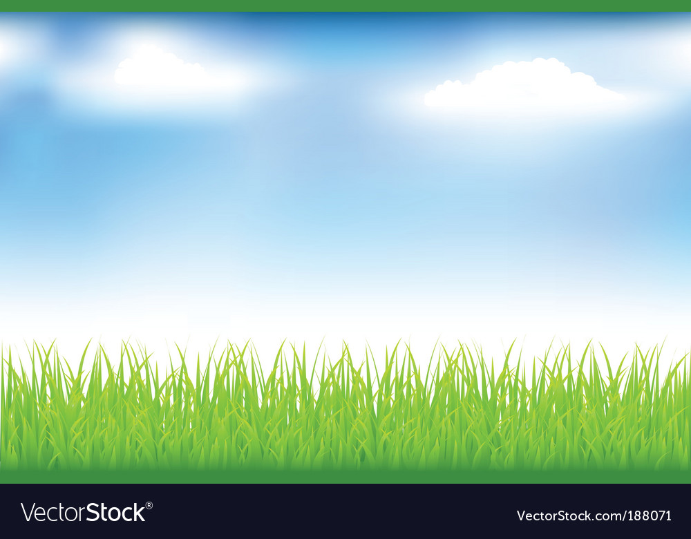 Grass and blue sky vector | Price: 1 Credit (USD $1)