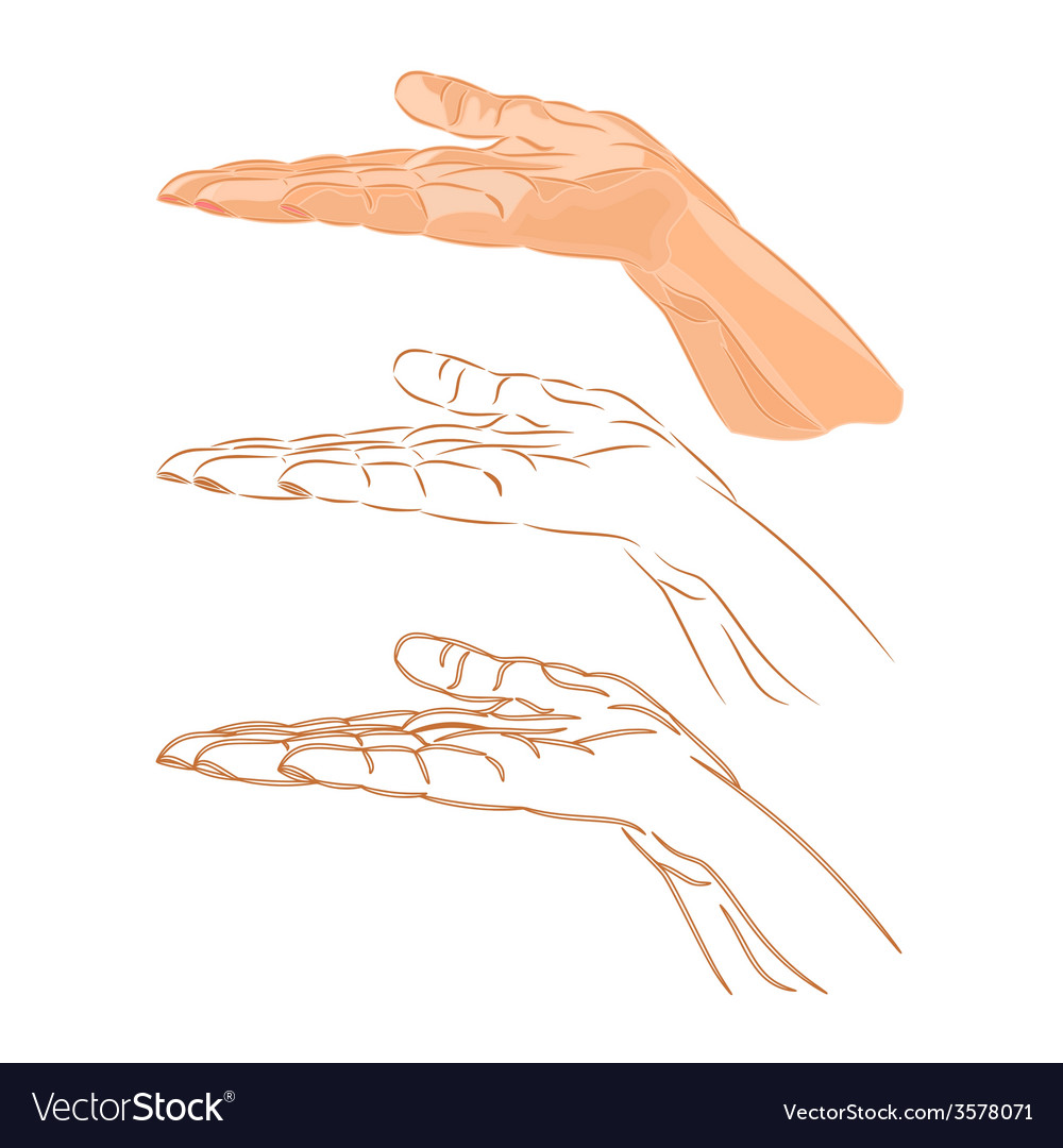 Human hand drawing vector   Price: 1 Credit (USD $1)