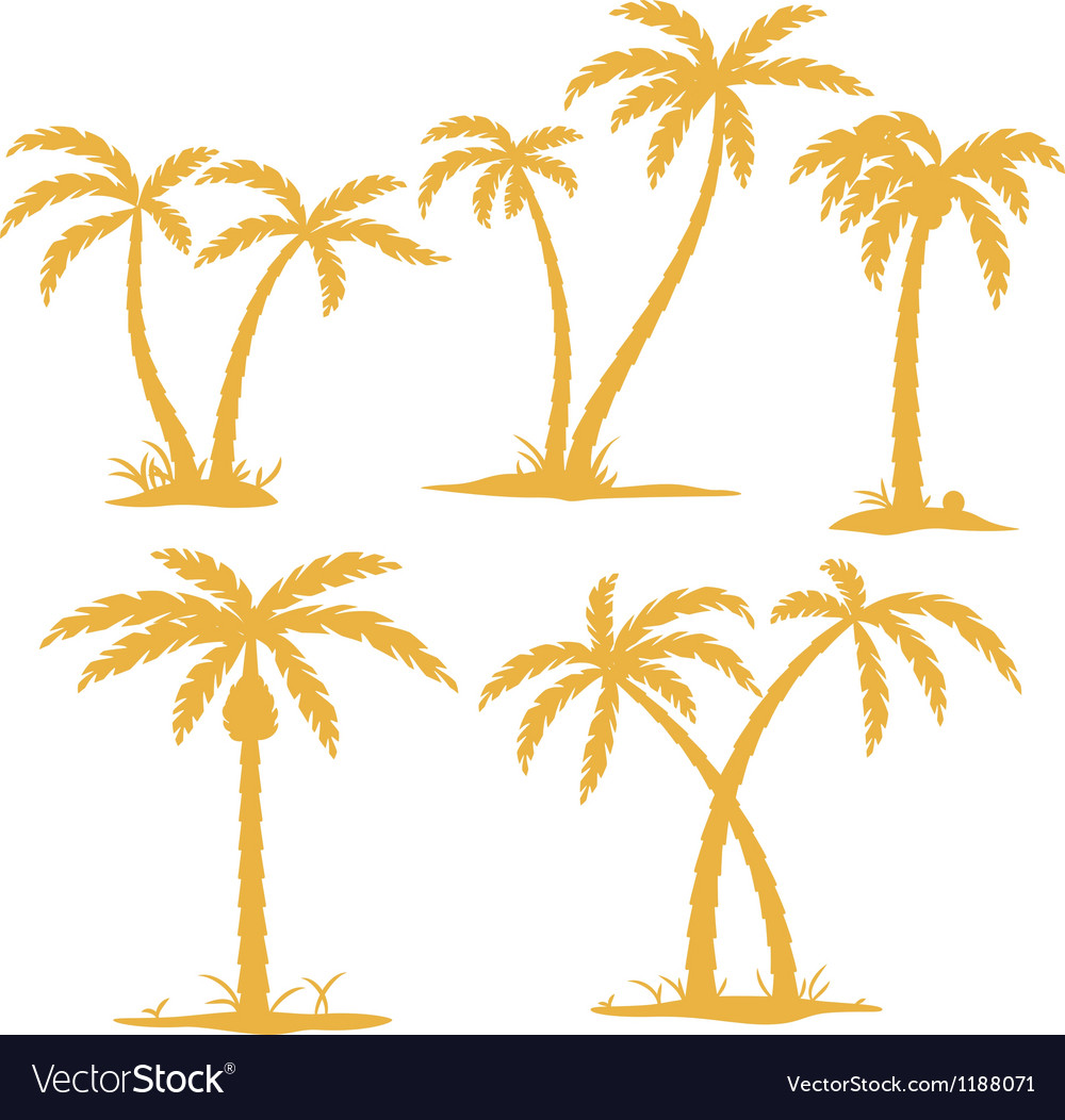 Palm contours vector | Price: 1 Credit (USD $1)
