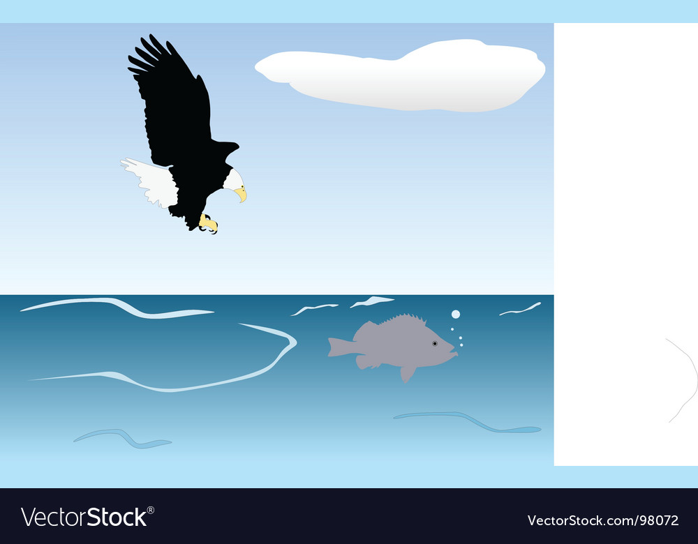 Bird of prey fishing vector | Price: 1 Credit (USD $1)