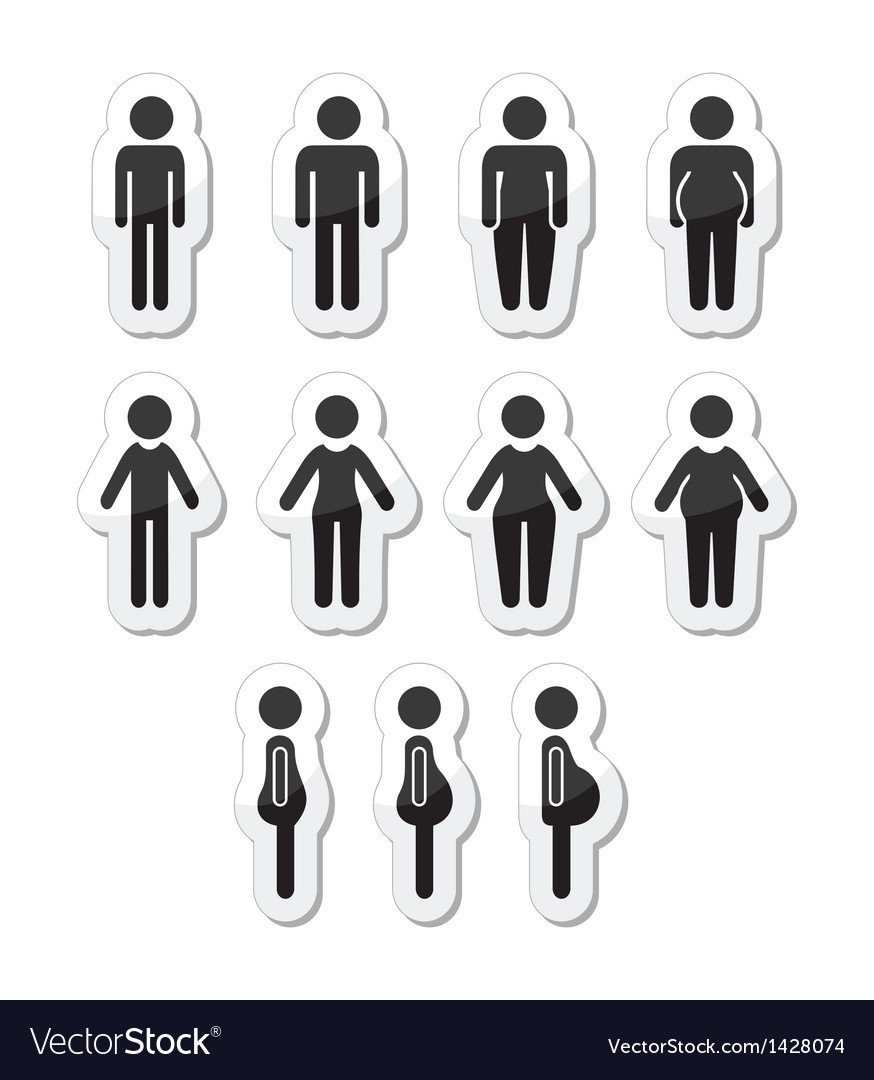 Man and women body type icons - slim fat obese vector | Price: 1 Credit (USD $1)
