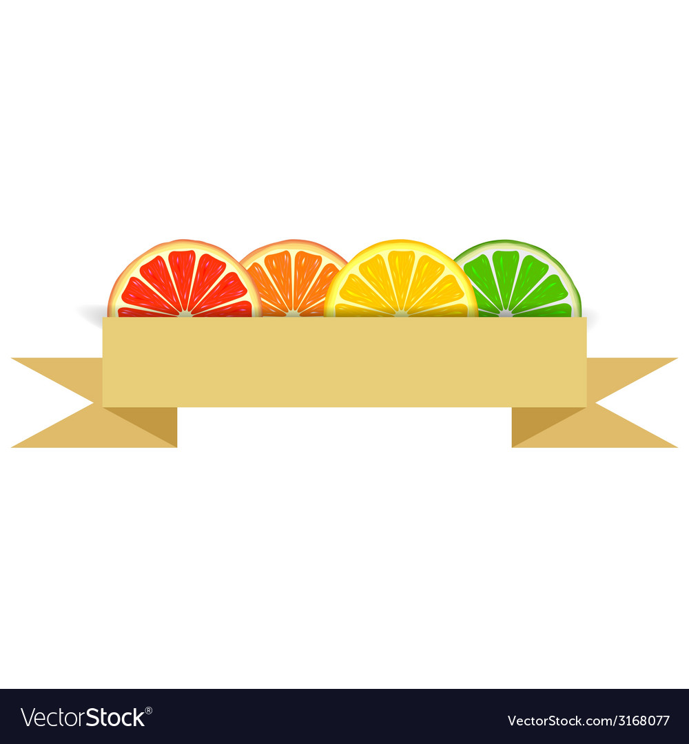 Citrus slices with paper banner vector | Price: 1 Credit (USD $1)