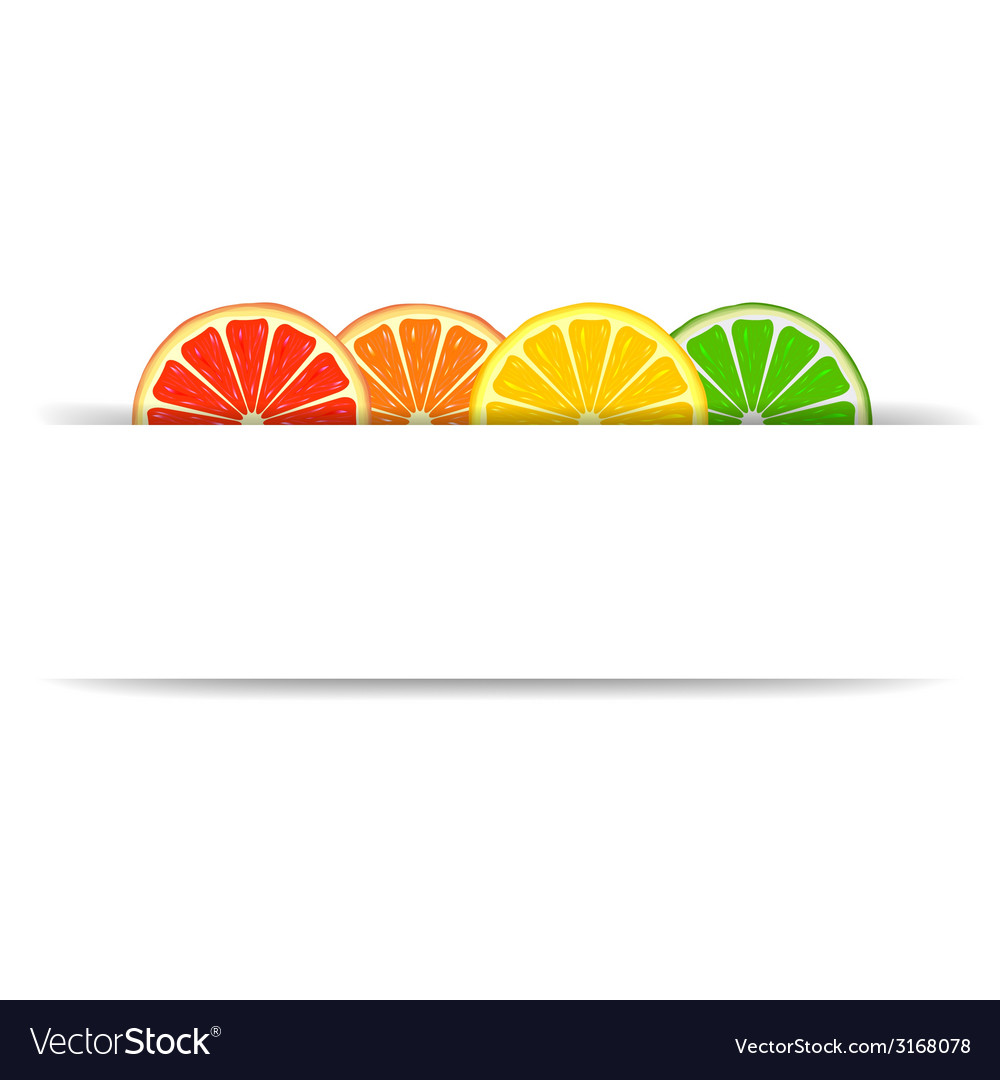 Citrus with paper banner vector | Price: 1 Credit (USD $1)