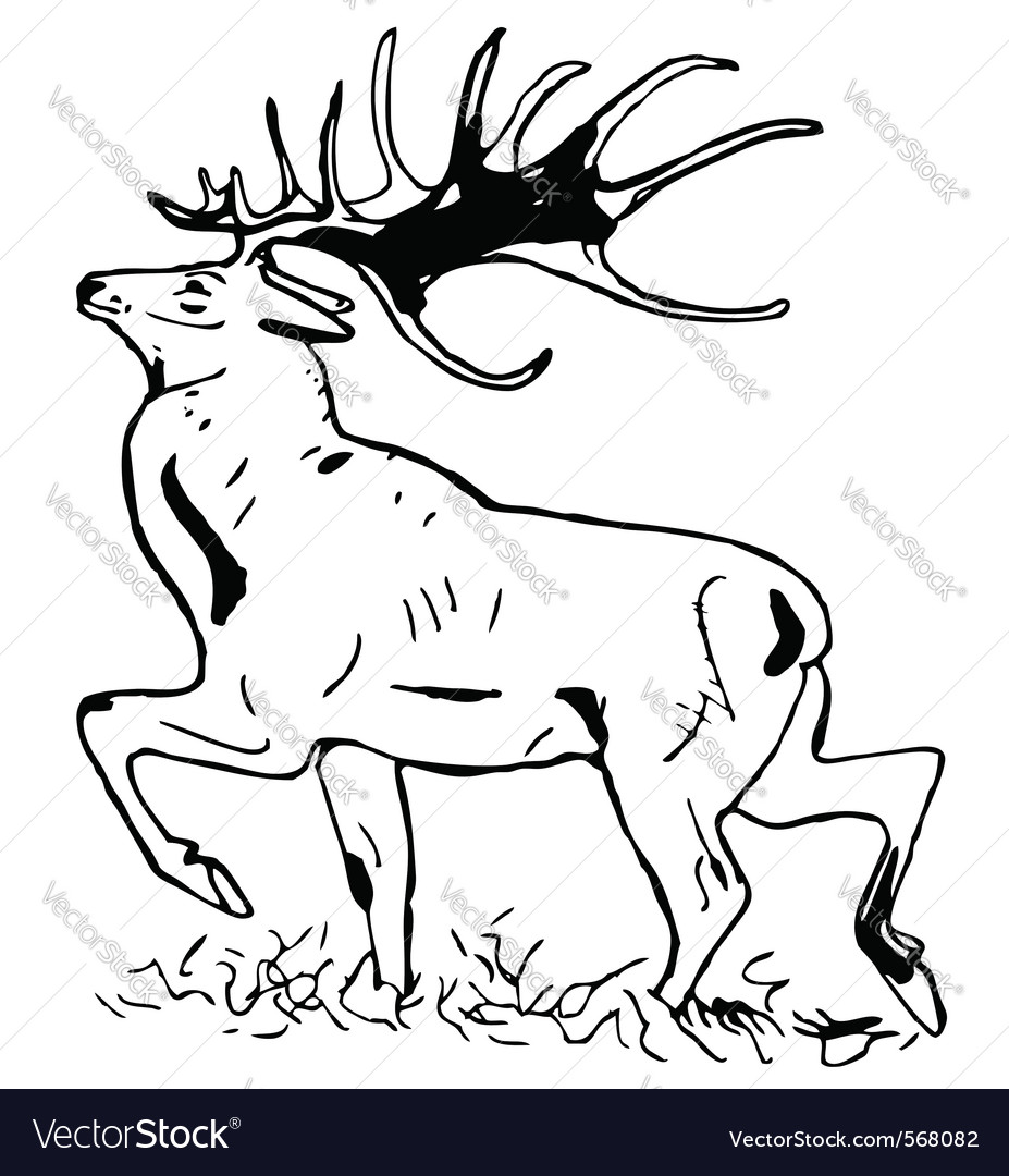 Deer with large antlers vector | Price: 1 Credit (USD $1)