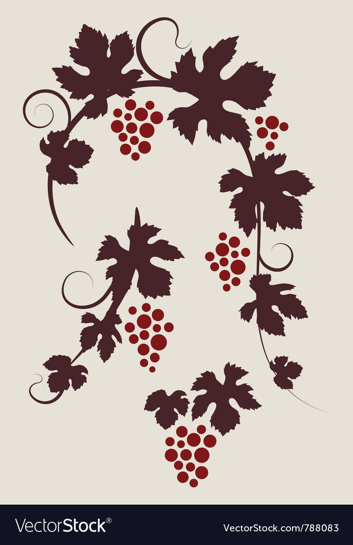Grape vines silhouettes set vector | Price: 1 Credit (USD $1)