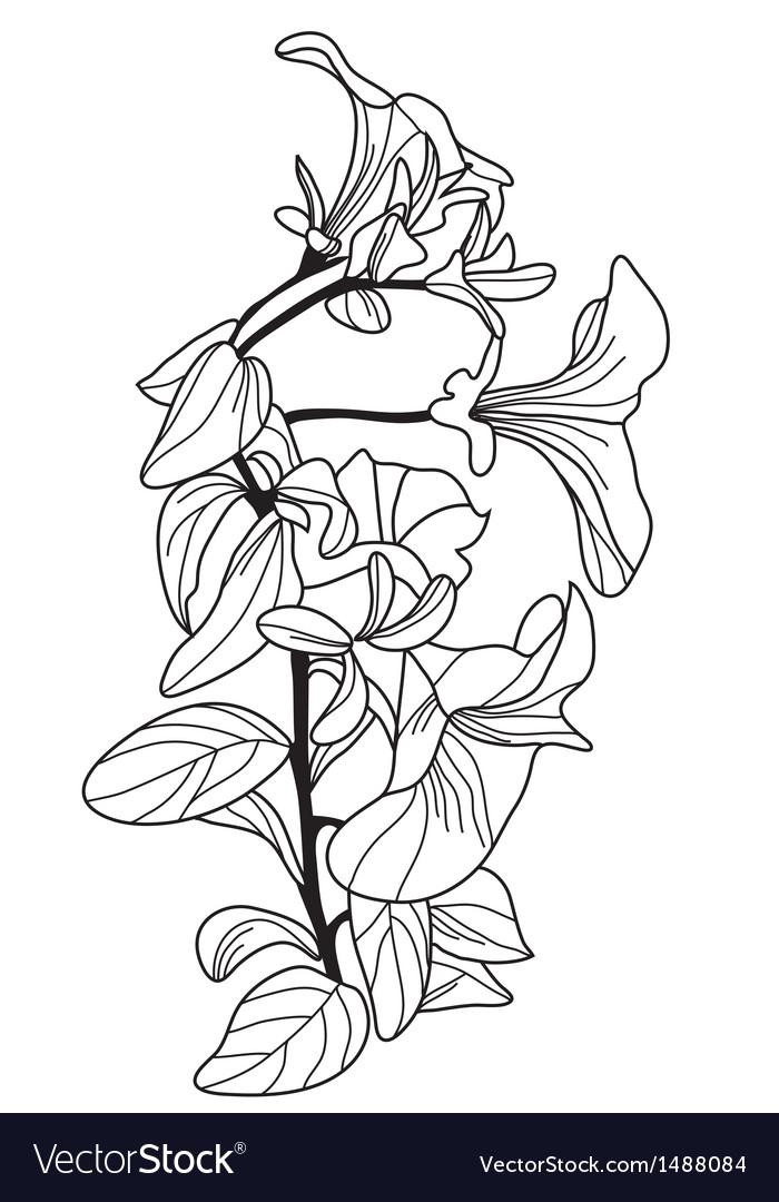 Decorative viola flowers vector | Price: 1 Credit (USD $1)