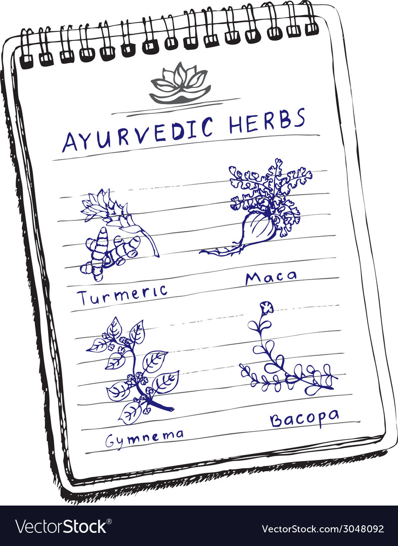 Handdrawn set - ayurvedic herbs vector | Price: 1 Credit (USD $1)