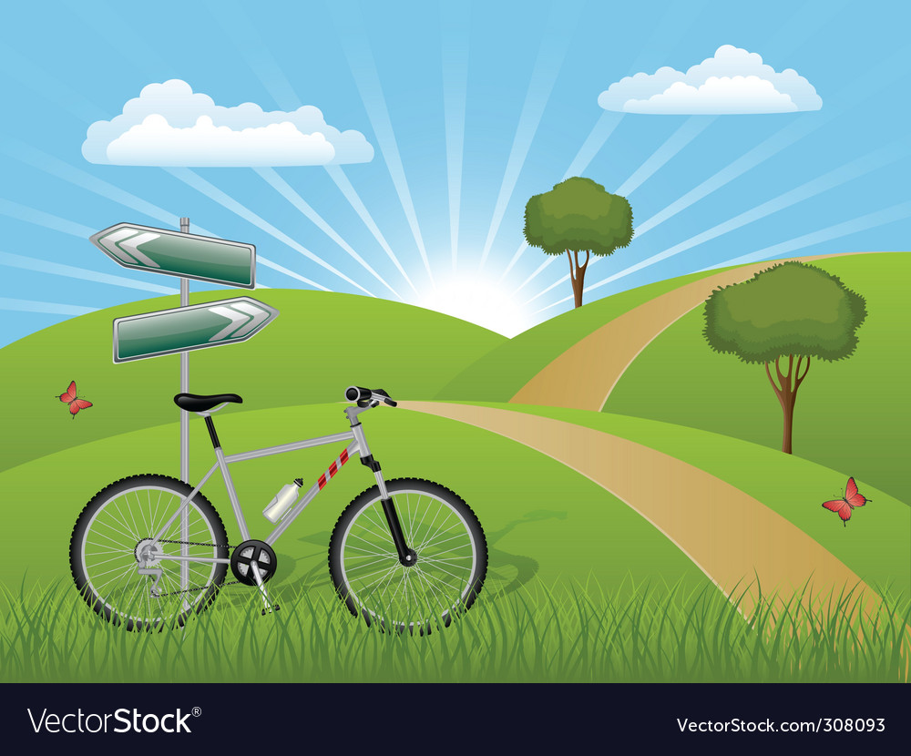 Summer landscape with a bike vector | Price: 1 Credit (USD $1)