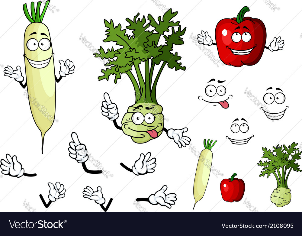 Turnip radish and pepper vegetables vector | Price: 1 Credit (USD $1)