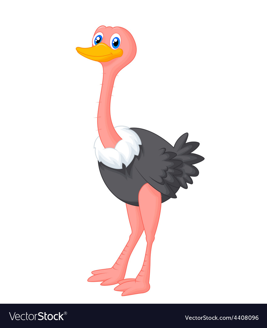 Cute ostrich cartoon vector | Price: 1 Credit (USD $1)