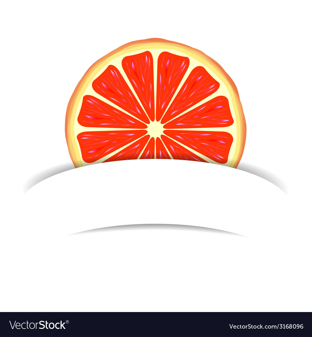Grapefruit with paper banner vector | Price: 1 Credit (USD $1)