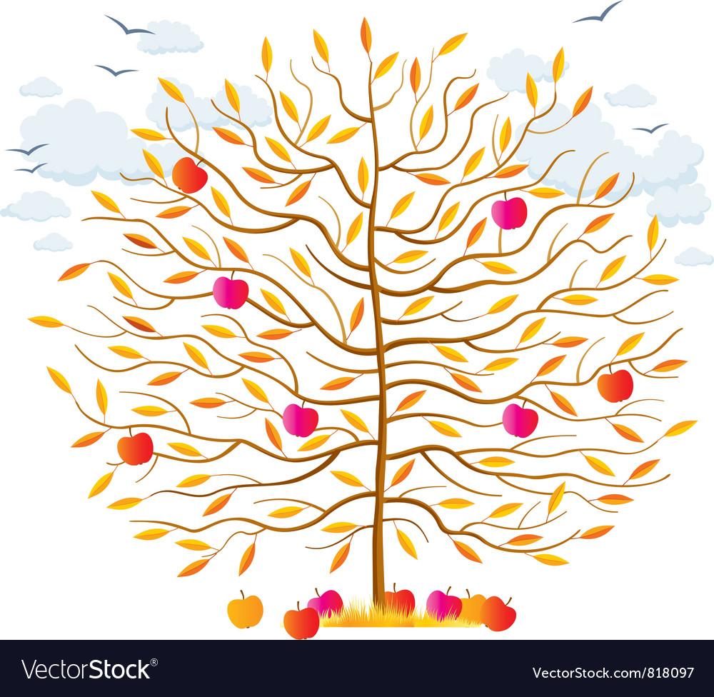 Autumn tree vector | Price: 1 Credit (USD $1)