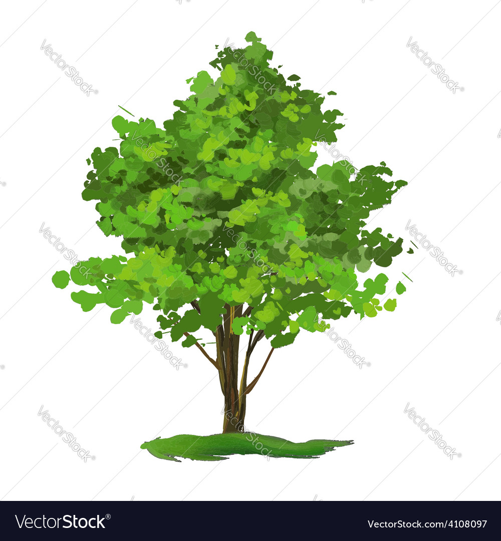 Tree hand drawn painted vector | Price: 1 Credit (USD $1)