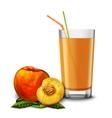Peach juice glass vector