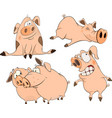A set of cheerful pigs cartoon vector