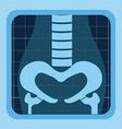 X rays design vector