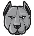 Pit bull head - pit bull terrier vector