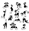 Black cats vector
