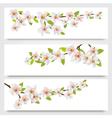 Three sakura branches banners vector