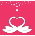Valentine birds vector