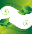 Leaves on a green background vector