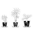 Set of houseplants vector
