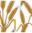 Wheat field seamless pattern vector