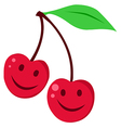 Two red cherrys vector