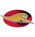 Wild cheetah vector