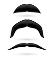 A set of three moustache vector