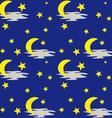 Night sky pattern vector