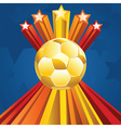 Soccer ball with stars5 vector