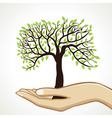 Small tree on hand vector