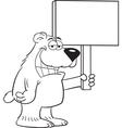 Cartoon bear holding a sign vector
