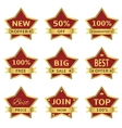 Red stars labels vector