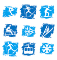 Winter sports grunge icons vector