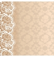Flower background with lace vector