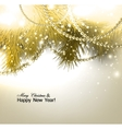Elegant christmas background with fir branches and vector