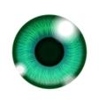Human green eye vector