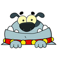 Gray bulldog vector
