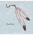 Colorful of feathers vector