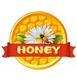 Bee and flower on honeycomb vector