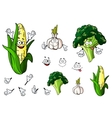 Broccoli garlic and corn vegetables vector