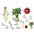 Turnip radish and pepper vegetables vector
