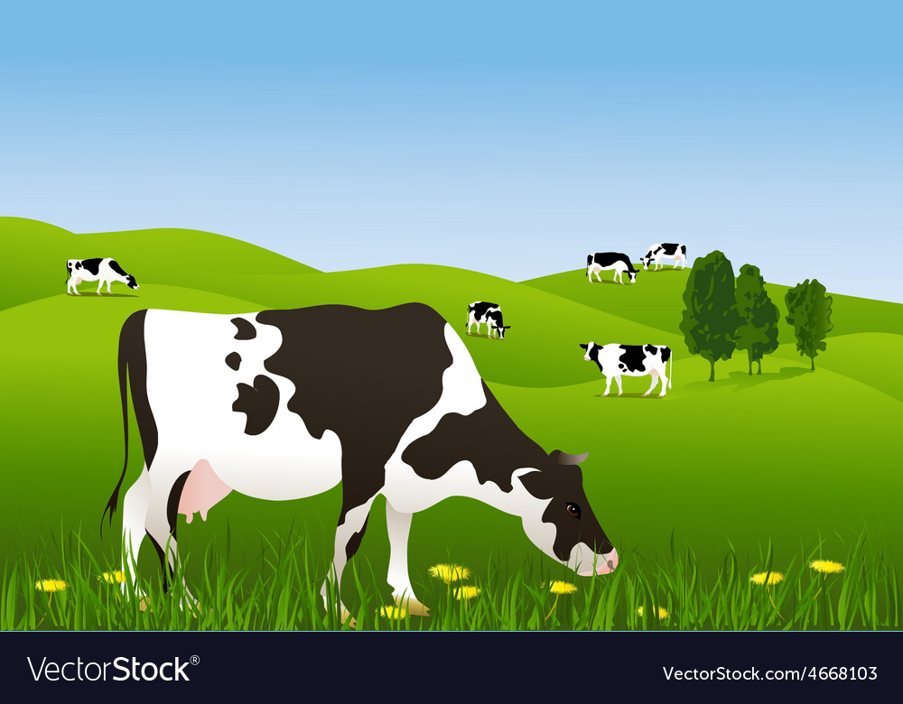 Cows in a meadow vector | Price: 1 Credit (USD $1)