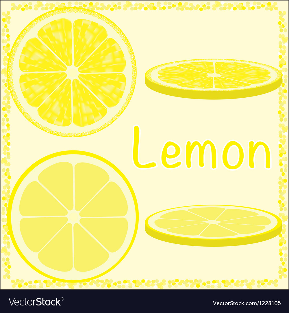 Citrus slices vector | Price: 1 Credit (USD $1)