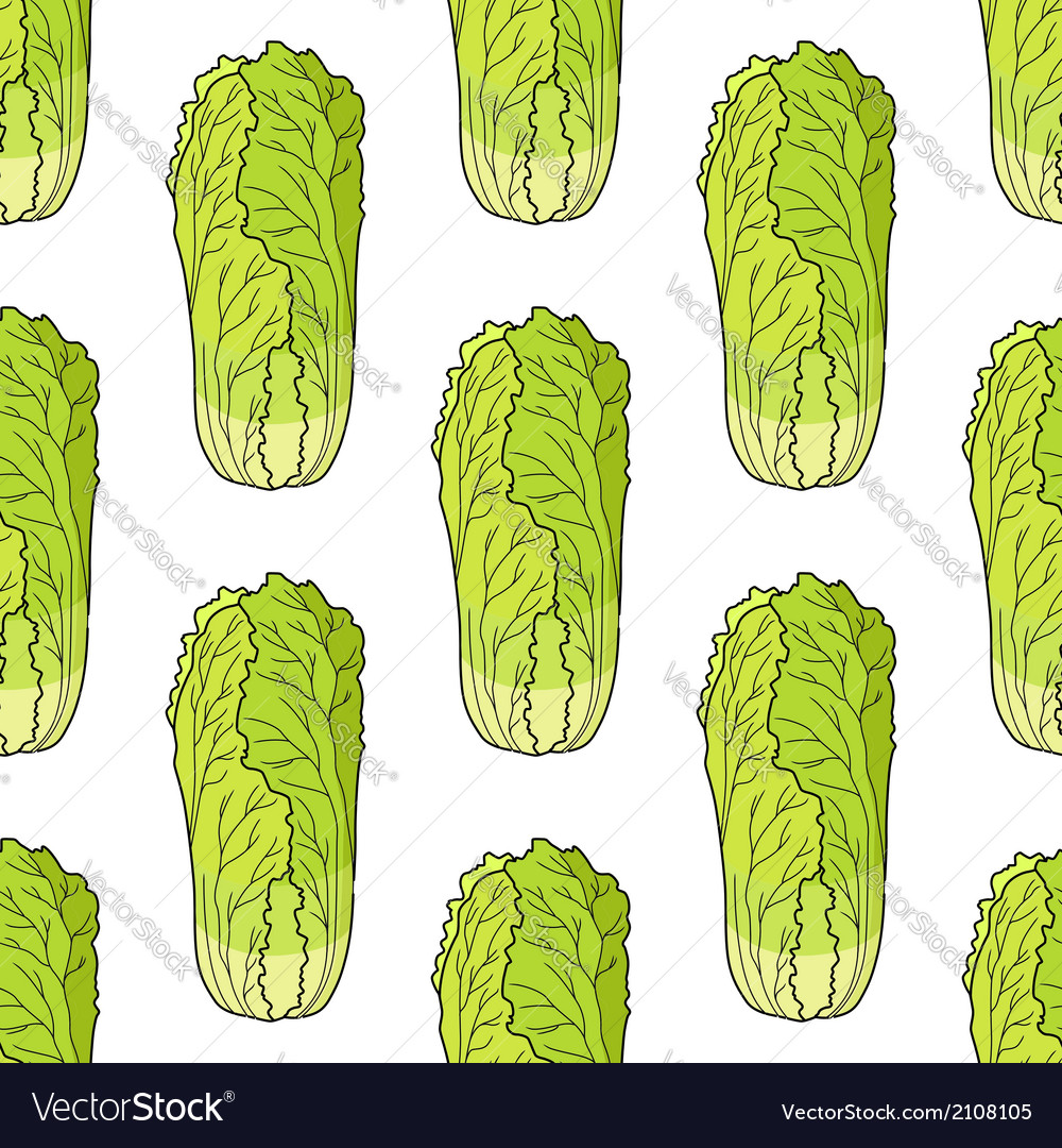 Seamless pattern of chinese lettuce vector | Price: 1 Credit (USD $1)