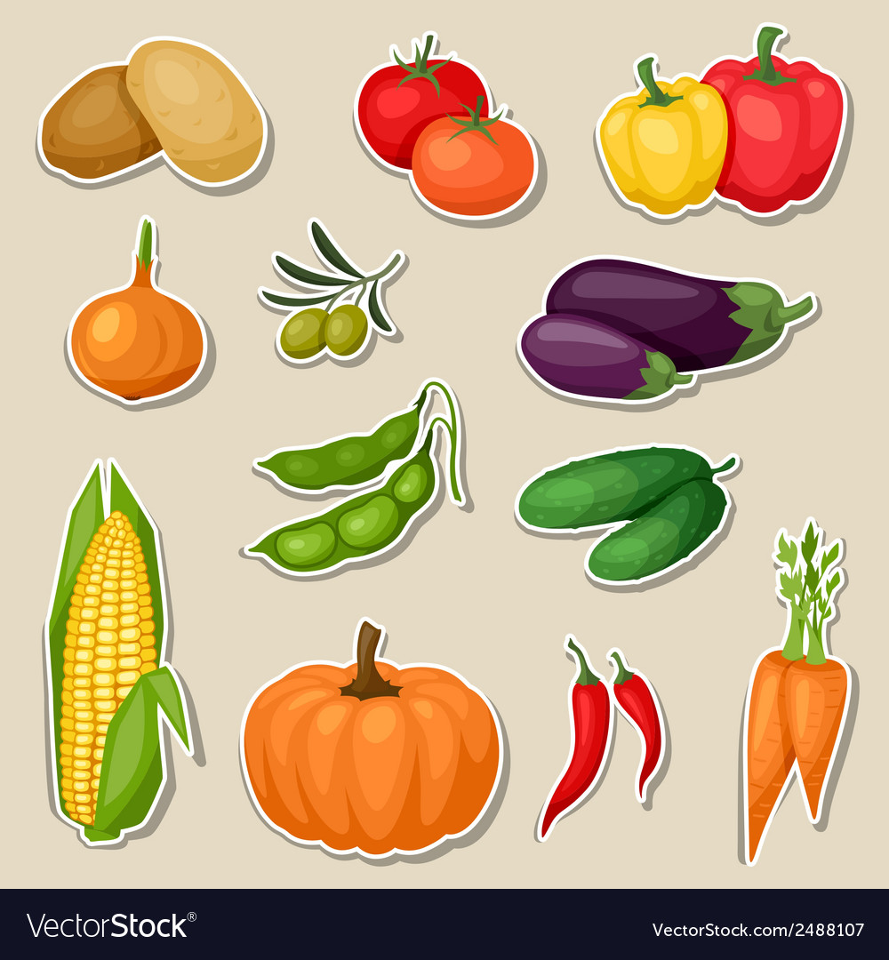 Sticker icon set of fresh ripe stylized vegetables vector | Price: 1 Credit (USD $1)