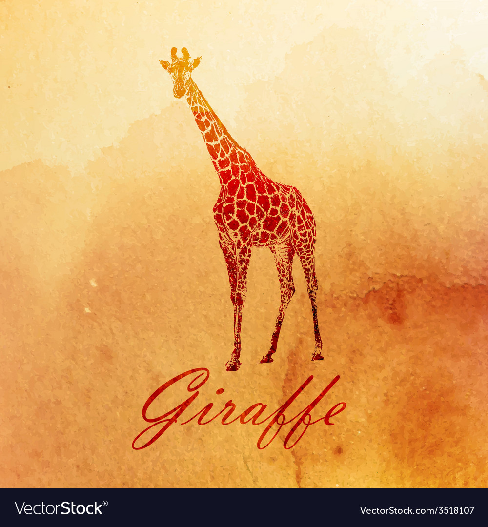 Vintage of a watercolor giraffe on the old paper vector | Price: 1 Credit (USD $1)